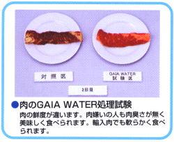 肉の鮮度が違います。
