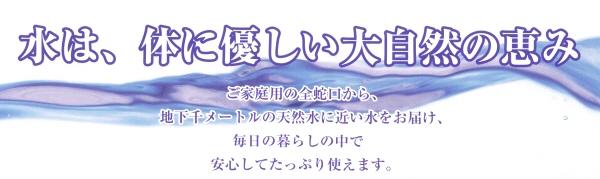 日本環境化学 ウォーターセキュリティ 日本ボイラーメンテナンス 源流工房  SDX-W